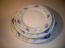 PILLIVUYT LAVE VAISSELLE PLATES-1 DINNER,2 SALADS,1 BREAD AND BUTTER-FRANCE