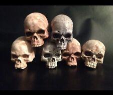 1/6 Skull Set Totenkopf 6xWarrior Bones Diorama Custom bemalt