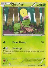 Chétiflor - XY:Poings Furieux - 1/111 - Carte Pokemon Neuve Française