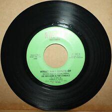 LEE WILLIAMS & CYMBALS What Am I Guilty Of *L.C. FUNK Soul Funk 45 on RAPDA 1002