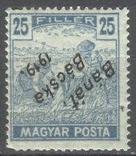 BANAT BACSKA 1919 Serbian occ. - 25 fillers INVERTED OVERPRINT folded MNH
