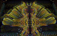 """PSYCHEDELIC TAPESTRY """"Vajroid"""" - UV blacklight backdrop, glow fractal art design"""
