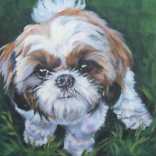 Shih Tzu dog portrait art Canvas PRINT of lashepard painting LSHEP 8x8""