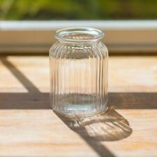18cm Tall Clear Ribbed Glass Cylinder Flower Vase