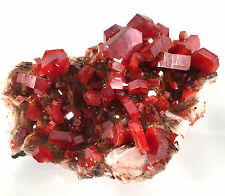 Vanadinite - Morocco - World Class Display Specimen
