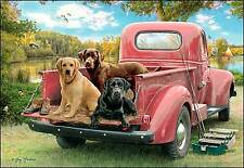 Leanin' Tree Father's Day Card - Old Red Truck & Dogs Theme - ID#534