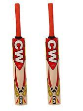 Smasher Kashmir Willow Cricket Bat Good Quality Training Bat Ideal Junior Player