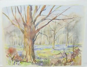 """ANNE SHENNAN """"SUSSEX BLUEBELL WOOD"""" ORIGINAL WATERCOLOR LANDSCAPE PAINTING"""