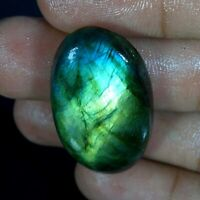 Multi Fire Spectrolite Labradorite Cabochon Multi Flash Gemstone Natural PD01