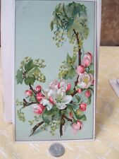 Vintage Print,WHITE APPLE BLOSSOMS,Card Stock