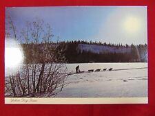 Original Yukon Dog Team Whitehorse Yukon Canada Uncirculated Postcard