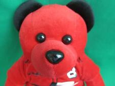 SOFT NASCAR DALE EARNHARDT JUNIOR 8 RED BLACK RACING SUIT TEDDY BEAR PLUSH 14""