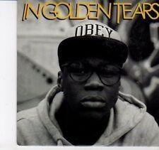(DI76) In Golden Tears, Underneath the Balance - 2012 DJ CD