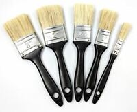"5 Pack Paint Brush Set All Purpose Disposable Brushes 1"" 2"" Home DIY Decorating"