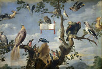 Oil painting Frans Snyders - concert of birds owl holding book on tree landscape