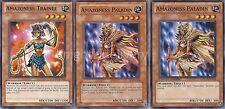 Authentic Tania Deck - Amazoness Archern - Tiger - Paladin - Yugioh - 40 Cards