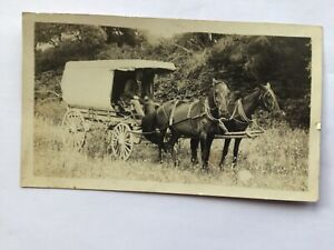 Man With 2 Horses & Buggy RPPC Vintage Old Real Photo Postcard