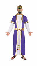 Adult Biblical King Costume Nativity Christmas Men's Size Standard