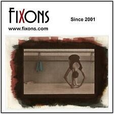 "Fixxons Digital Negative Inkjet Film for Contact Printing 13"" x 19"""