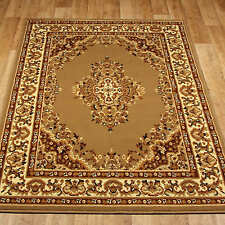TRADITIONAL  Persian/Oriental RUGS  LIGHT BEIGE Floral Rug  Cheap Carpet Mats