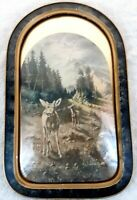 "Large Wood Bubble Glass Convex Frame 21.5"" x 13.5"" Wildlife Print W.A. Carson"