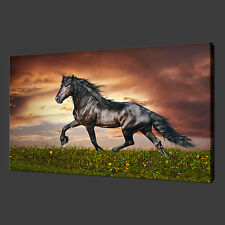 HORSE SUNSET QUALITY CANVAS PRINT WALL ART READY TO HANG