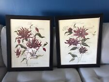 Black framed Botanical Prints Set of two, new in box, Home Interiors & Gifts Gtc