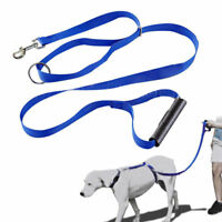 Dog Instant Trainer Leash Dog Pet Rope Walking Training 30lbs Stop Pulling Pull