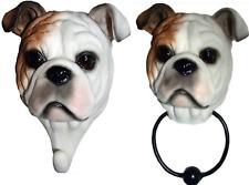 BULLDOG TWIN PACK NOVELTY HOOK & DOOR KNOCKER RESIN BRITISH BULL DOG LARGE 20cm