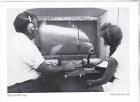 """*Postcard-""""Dolphin Studies"""" -Research in 1960's- *Marineland, Florida  (#246)"""