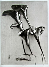 Man Ray Flowers Photographic Reprint  in Black and White 14x11