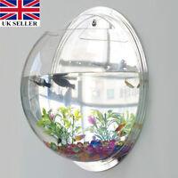 Hot Goldfish Betta Wall Mounted Fish Tank Bowl Bubble Aquarium Hanging Terrarium