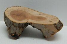 "Apple Wood Chunk Pillar Crotch 8""L 3""H Arts Crafts Woodworking Display"