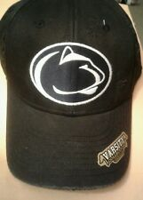 quality design f0e83 3f795 Penn State Nittany Lions fitted hat Varsity Collection top of the world OSFA