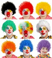 Mens Womens Adults Crazy Colourful Afro Wig Clown Carnival Fancy Dress Accessory