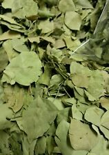 Big SIDR  leaves.Dried / broken  sidr leaves 150g . from yemen -.2018 stock