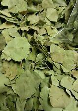 BIG lascia. secco/rotto Organic sidr foglie 150g. DALLO YEMEN -. 2017 STOCK