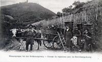 CPA 67 HAUT KOENIGSBOURG GROUPE DE VIGNERONS PRES DU HOT KOENIGSBOURG (dos non d