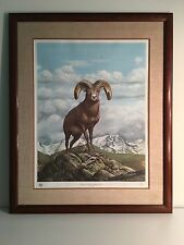 FANTASTIC ROCKY MOUNTAIN BIG HORNED SHEEP PRINT BY RAY HARM