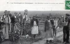 CPA 51 LES VENDANGES EN CHAMPAGNE LES DEBARDEURS PORTENT LES PANIERS AUX VOITURE