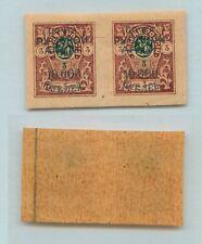 Russia Wrangel 🇷🇺 1921 Sc 310 mint blue pair. g971