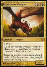 Broodmate Dragon | EX | Shards of Alara | Magic MTG