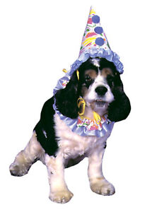 Pet Adorable Costume With Conicla Clown Hat And Ruffle Collar Funworld