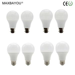 E27 B22 Led Lights Globe Bulbs 5W 7W DC12-85V AC220-240V Day White Warm White