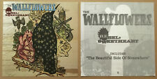 Jakob Dylan Wallflowers Rare Set of 2 Double Sided Promo Poster Flat of 2005 Cd