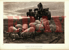 Excellent antique, vintage gravure, impression: evening on the south downs murray