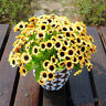 14 Mini Artifical Plastic Sunflower Flower Bouquet Home Office Decor Hot Sales