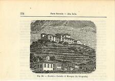Stampa antica SONDRIO Castello MASEGRA Valtellina 1896 Old antique print