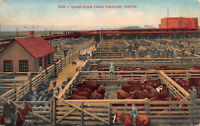 Union Stock Yards, Portland, Oregon, Early Postcard, Used in 1912