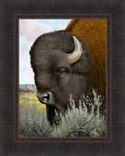 MONARCH OF THE PLAINS by Derk Hansen 17x21 Bison Buffalo FRAMED ART PRINT